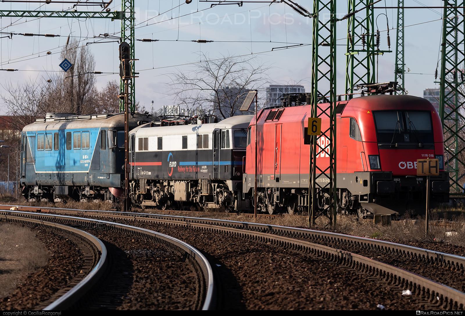 Siemens ES 64 U2 - 1116 018 operated by Rail Cargo Hungaria ZRt. #es64 #es64u #es64u2 #eurosprinter #rch #siemens #siemenses64 #siemenses64u #siemenses64u2 #siemenstaurus #tauruslocomotive