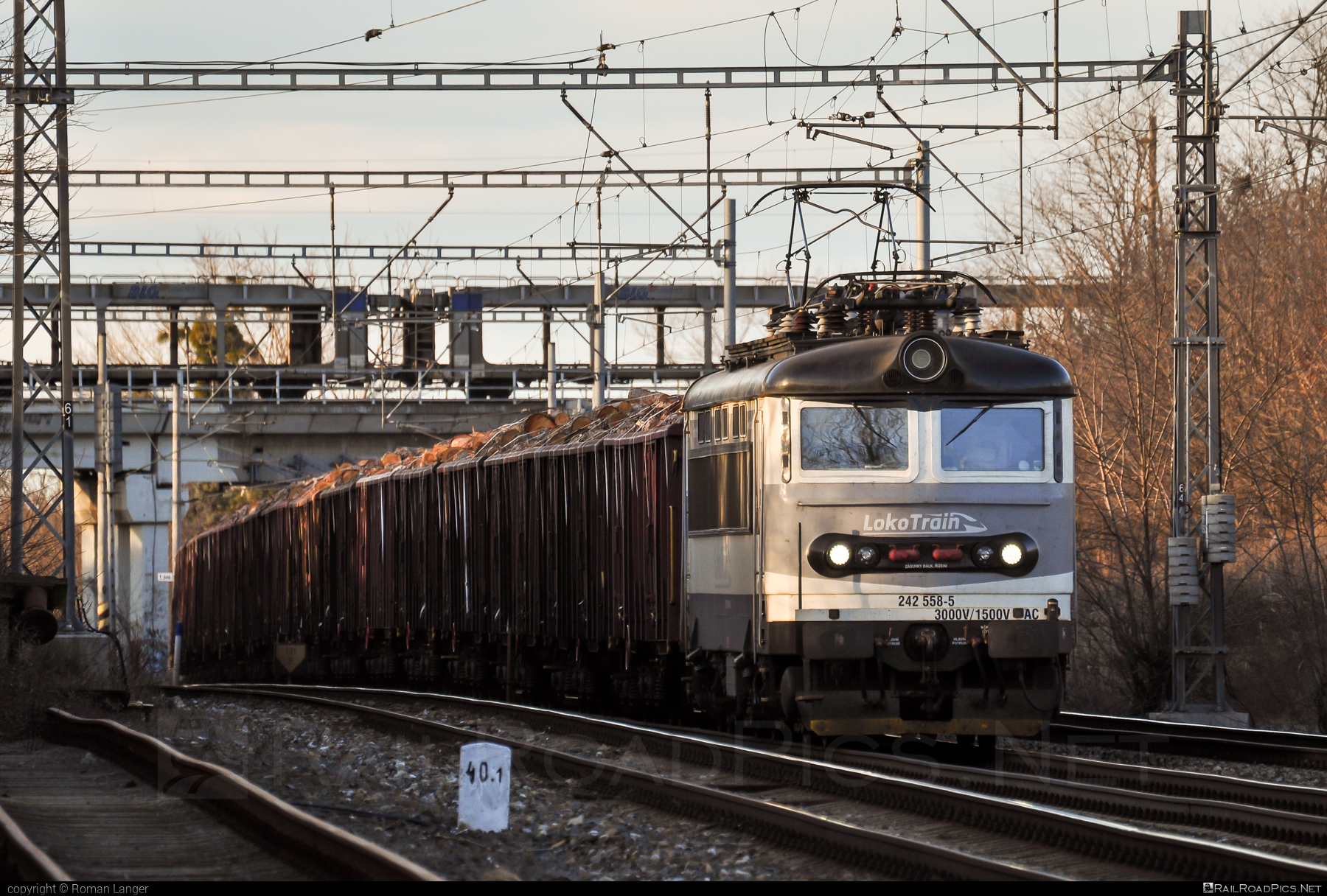 Škoda 73E - 242 558-5 operated by Loko Train s.r.o. #locomotive242 #lokotrain #lokotrainsro #plechac #skoda #skoda73e
