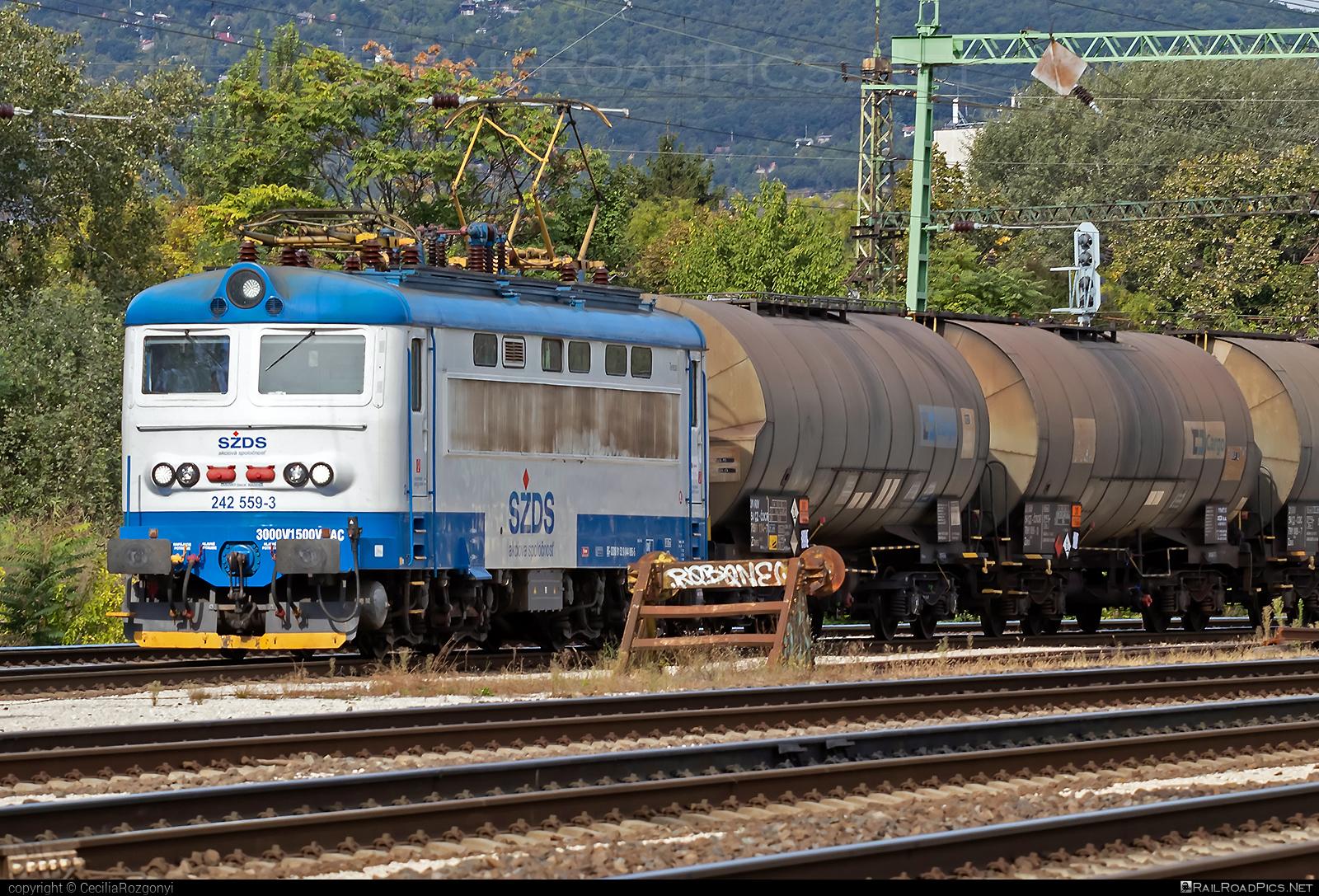 Škoda 73E - 242 559-3 operated by I. G. Rail, s. r. o. #igrail #kesselwagen #locomotive242 #plechac #skoda #skoda73e #szds #tankwagon