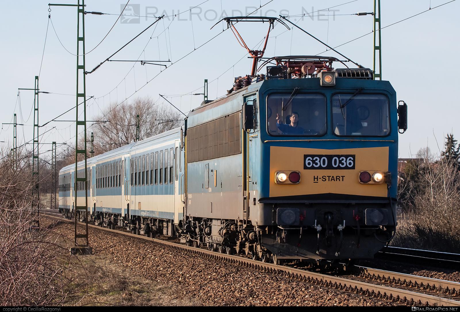 Ganz-MÁVAG VM15-4 - 630 036 operated by MÁV-START ZRt. #ganz63 #ganz630 #ganzmavag #ganzmavag63 #ganzmavag630 #ganzmavagvm154 #locomotive630 #mav #mavstart #mavstartzrt #v63locomotive