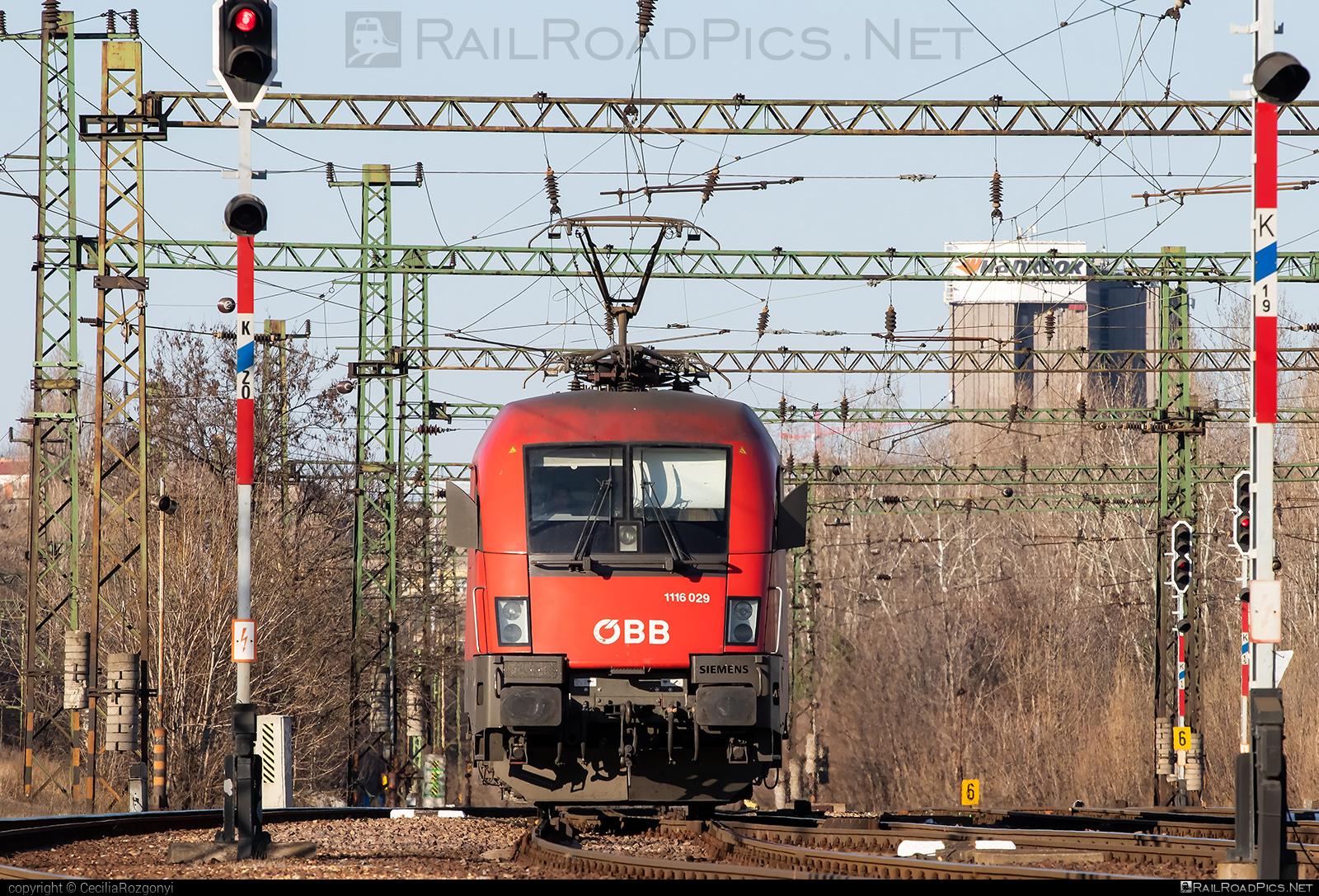 Siemens ES 64 U2 - 1116 029 operated by Rail Cargo Hungaria ZRt. #es64 #es64u #es64u2 #eurosprinter #obb #osterreichischebundesbahnen #rch #siemens #siemenses64 #siemenses64u #siemenses64u2 #siemenstaurus #taurus #tauruslocomotive