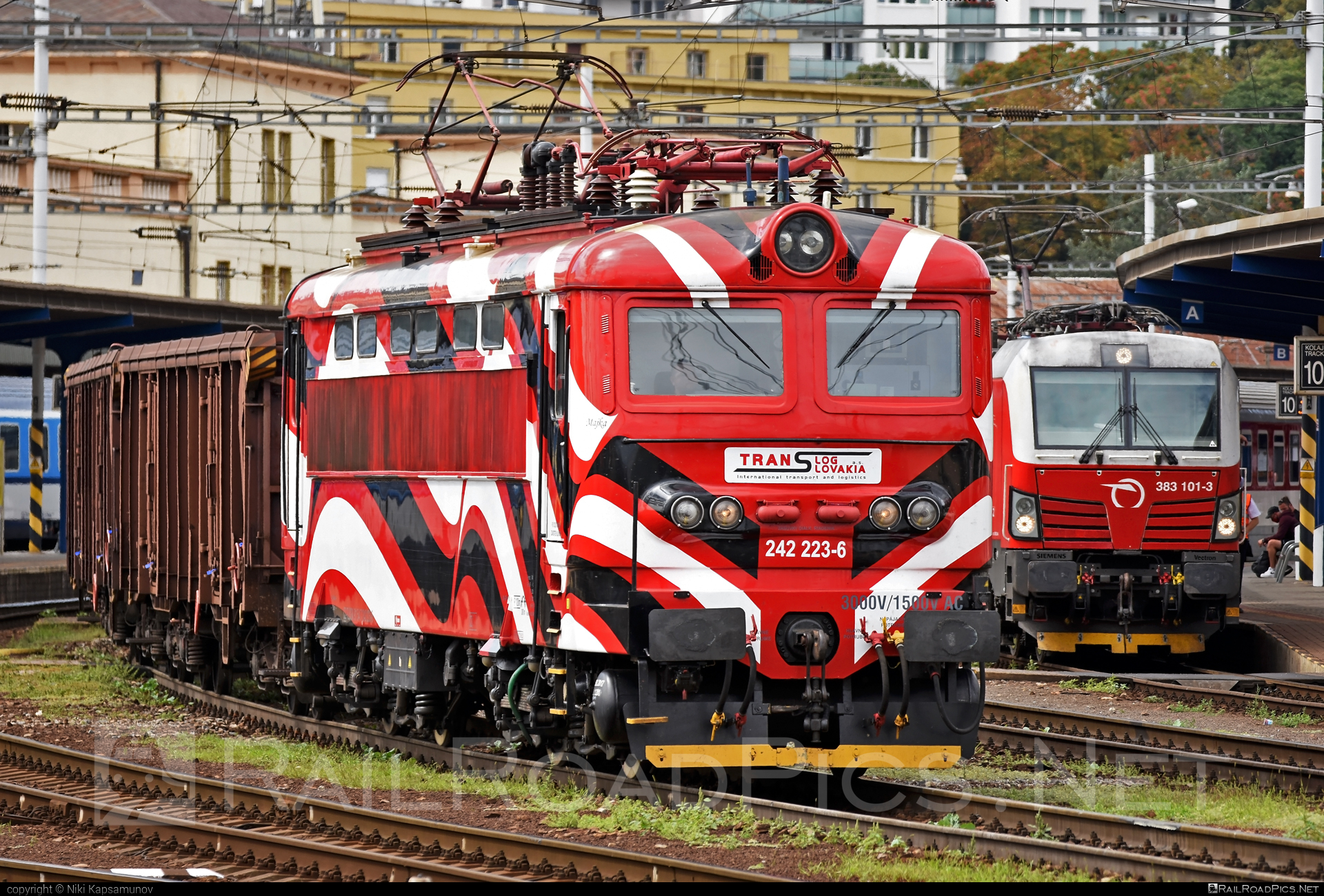 Škoda 73E - 242 223-6 operated by PETROLSPED Slovakia s.r.o. #locomotive242 #plechac #skoda #skoda73e #tlssk #translog #translogslovakia
