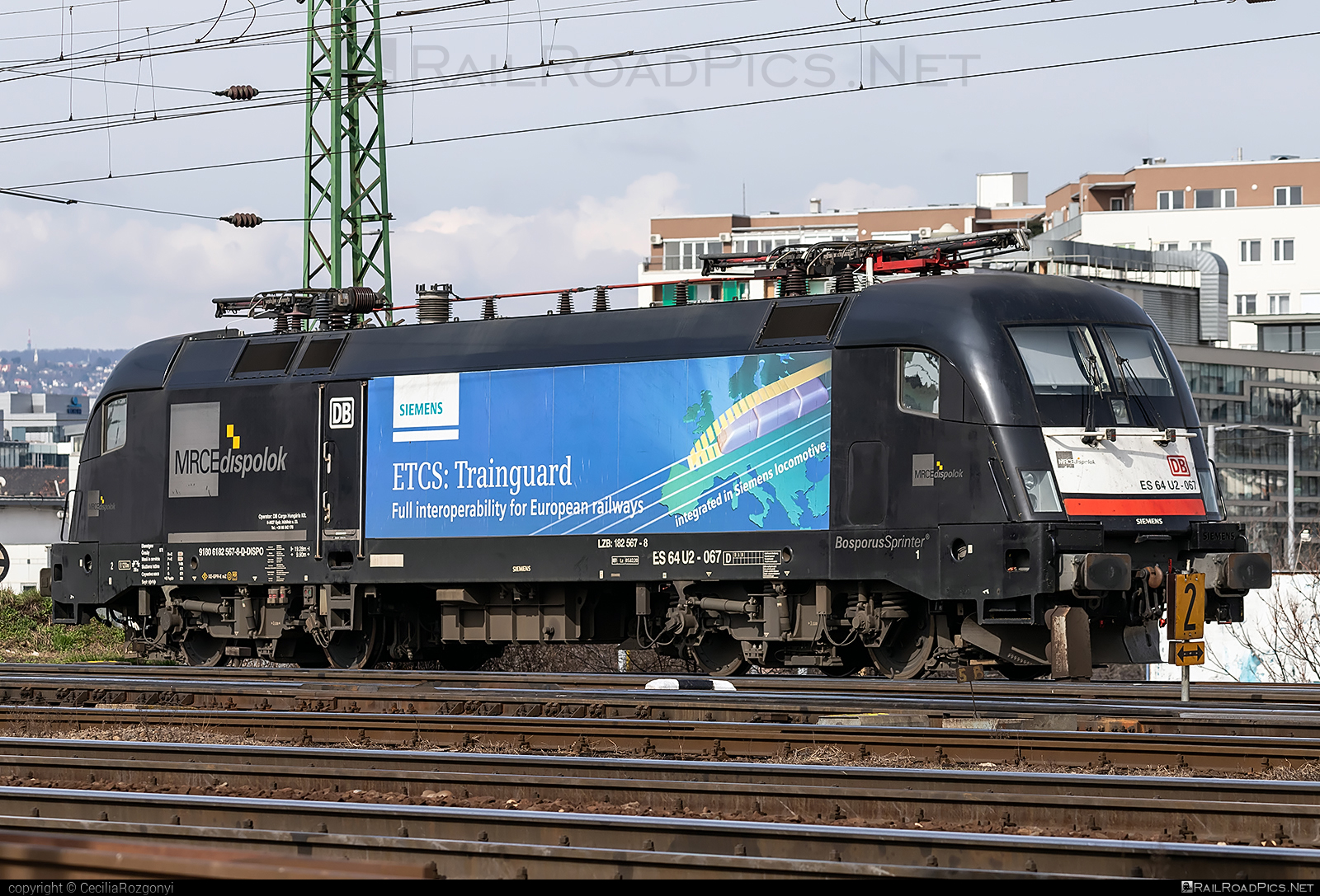 Siemens ES 64 U2 - 182 567-8 operated by DB Cargo Hungária Kft #db #dbcargo #dbcargohungaria #dispolok #es64 #es64u #es64u2 #eurosprinter #mitsuirailcapitaleurope #mitsuirailcapitaleuropegmbh #mrce #siemens #siemenses64 #siemenses64u #siemenses64u2 #siemenstaurus #taurus #tauruslocomotive