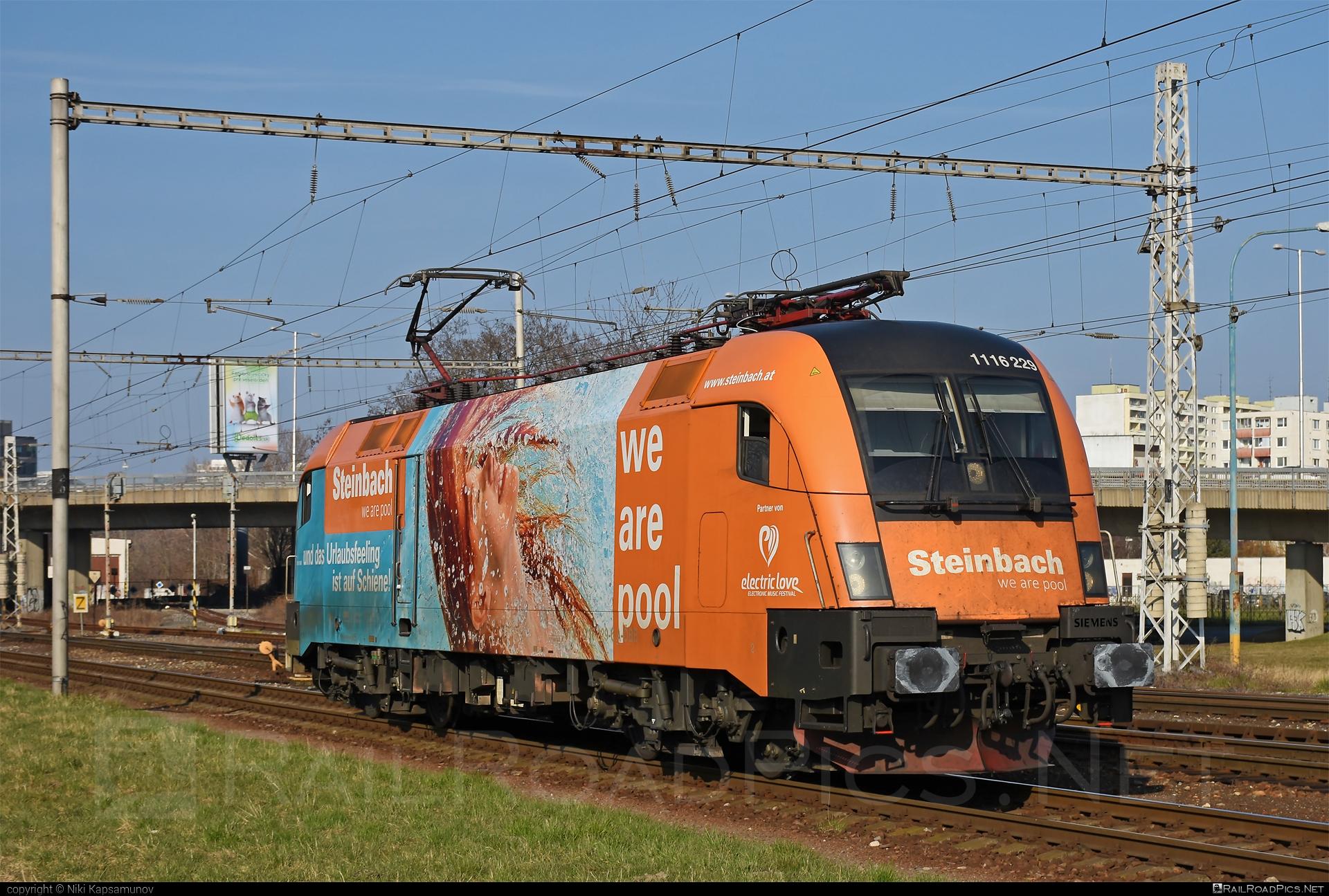 Siemens ES 64 U2 - 1116 229 operated by Rail Cargo Austria AG #es64 #es64u #es64u2 #eurosprinter #obb #osterreichischebundesbahnen #rcw #siemens #siemenses64 #siemenses64u #siemenses64u2 #siemenstaurus #steinbach #taurus #tauruslocomotive