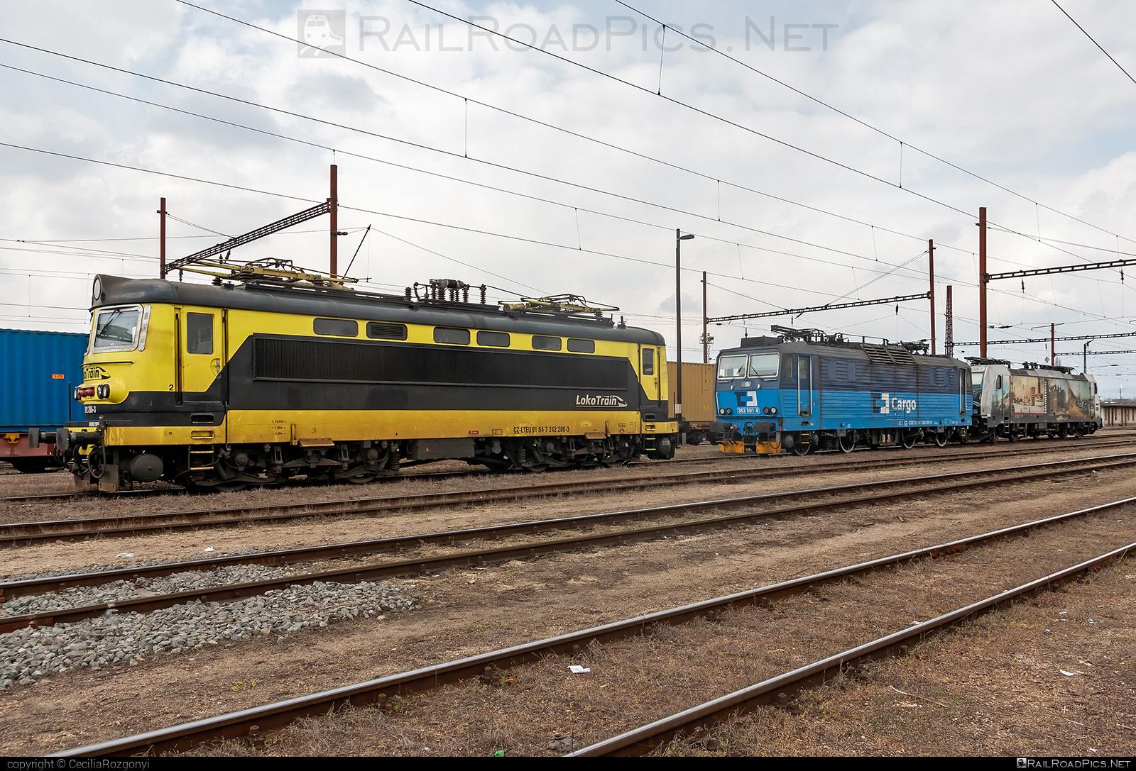 Škoda 73E - 242 286-3 operated by Loko Train s.r.o. #locomotive242 #lokotrain #lokotrainsro #plechac #skoda #skoda73e