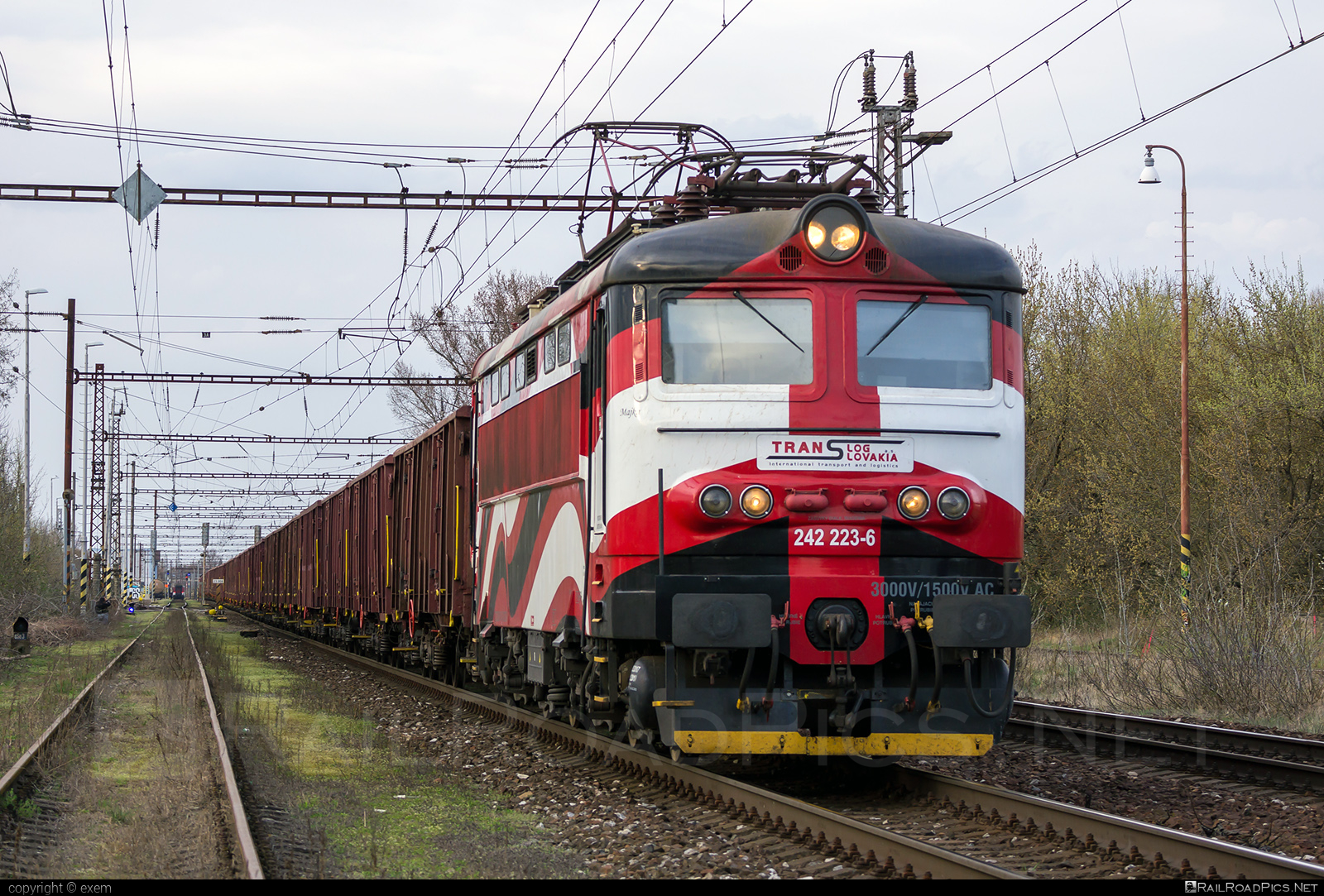 Škoda 73E - 242 223-6 operated by PETROLSPED Slovakia s.r.o. #locomotive242 #petrolsped #plechac #skoda #skoda73e #tlssk #translog #translogslovakia