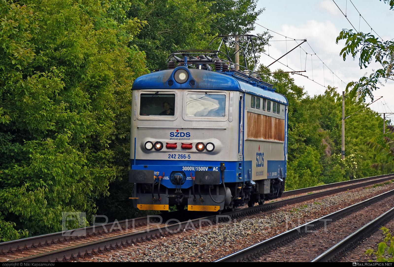 Škoda 73E - 242 266-5 operated by I. G. Rail, s. r. o. #igrail #locomotive242 #plechac #skoda #skoda73e #szds