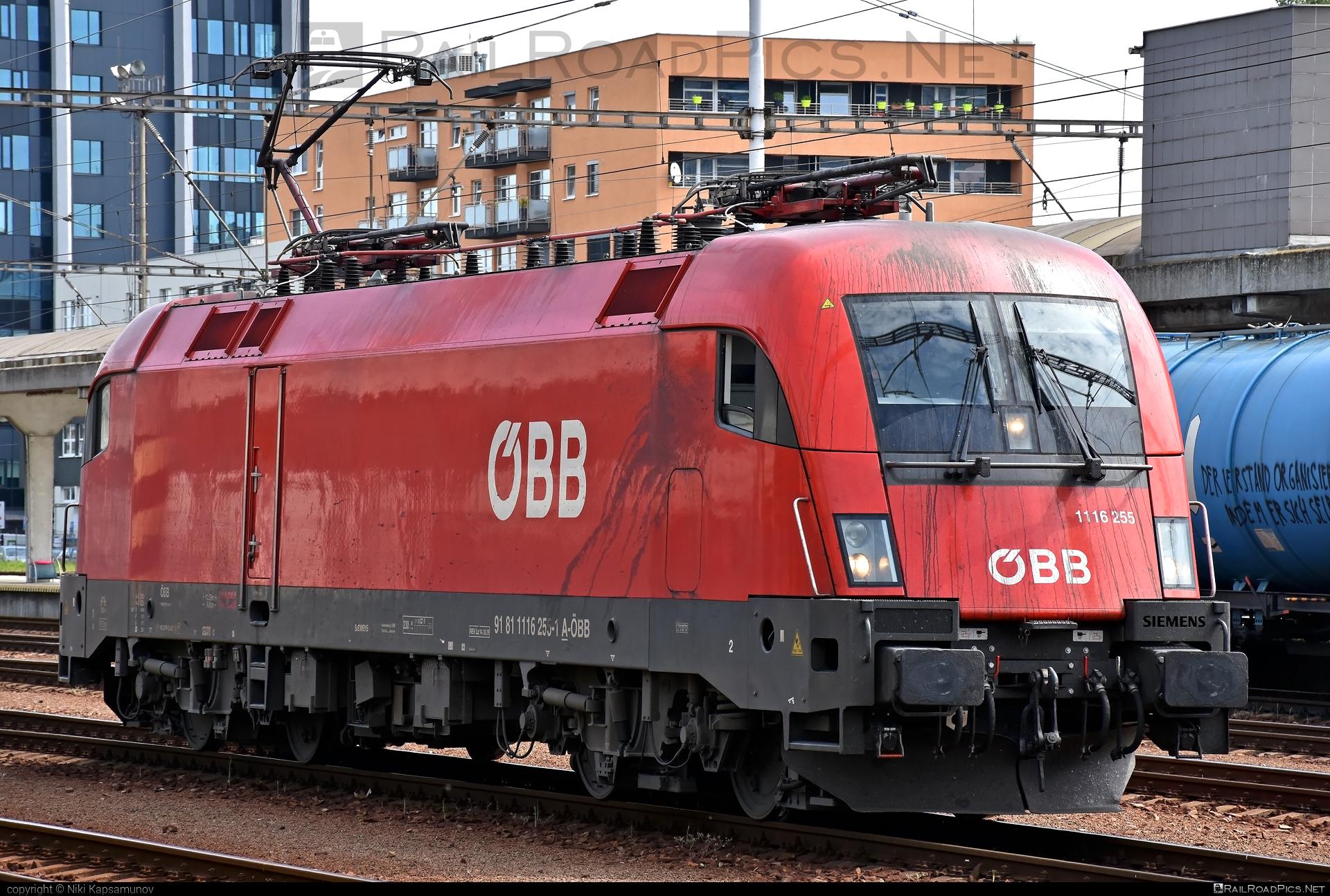 Siemens ES 64 U2 - 1116 255 operated by Rail Cargo Austria AG #es64 #es64u #es64u2 #eurosprinter #obb #osterreichischebundesbahnen #siemens #siemenses64 #siemenses64u #siemenses64u2 #siemenstaurus #taurus #tauruslocomotive