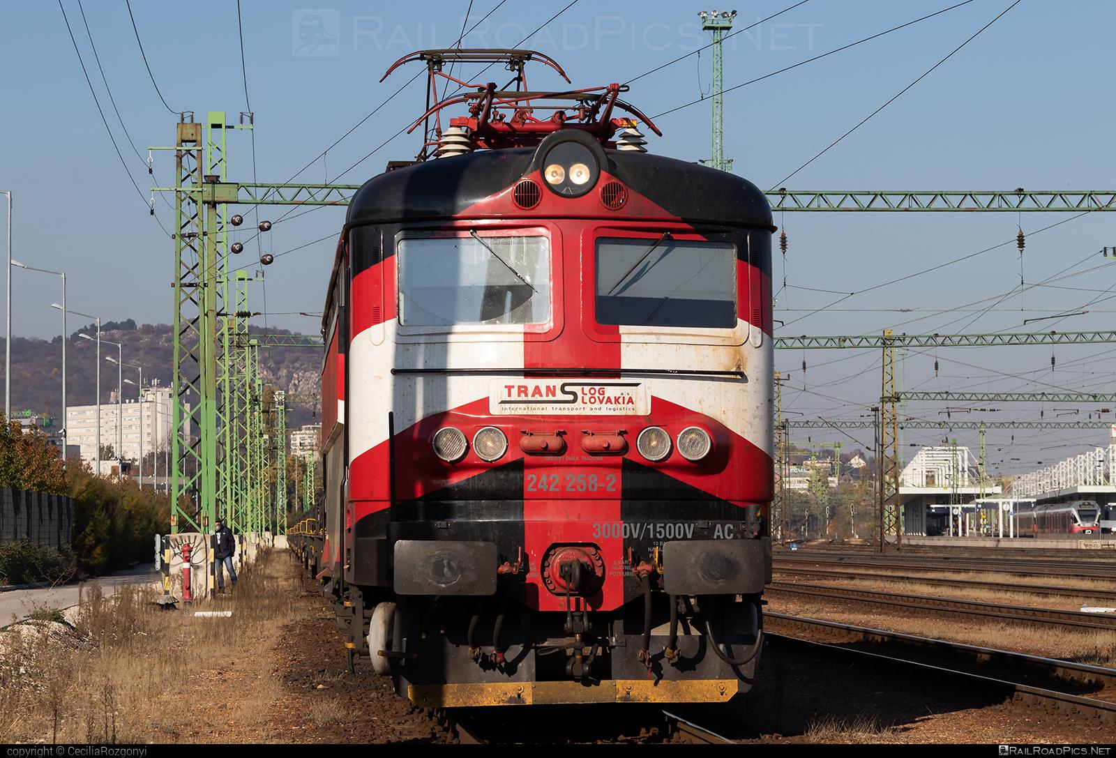 Škoda 73E - 242 258-2 operated by PETROLSPED Slovakia s.r.o. #locomotive242 #plechac #skoda #skoda73e #tlssk #translog #translogslovakia