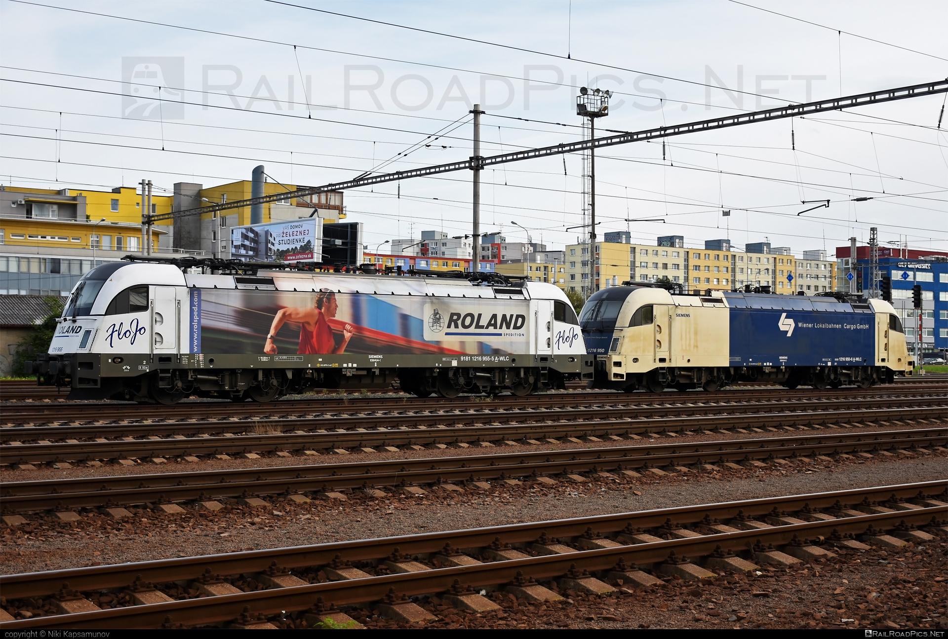 Siemens ES 64 U4 - 1216 955 operated by Wiener Lokalbahnen Cargo GmbH #FloJo #es64 #es64u #es64u4 #eurosprinter #roland #rolandspedition #siemens #siemenses64 #siemenses64u #siemenses64u4 #siemenstaurus #tauruslocomotive #wienerlokalbahnencargo #wienerlokalbahnencargogmbh #wlc