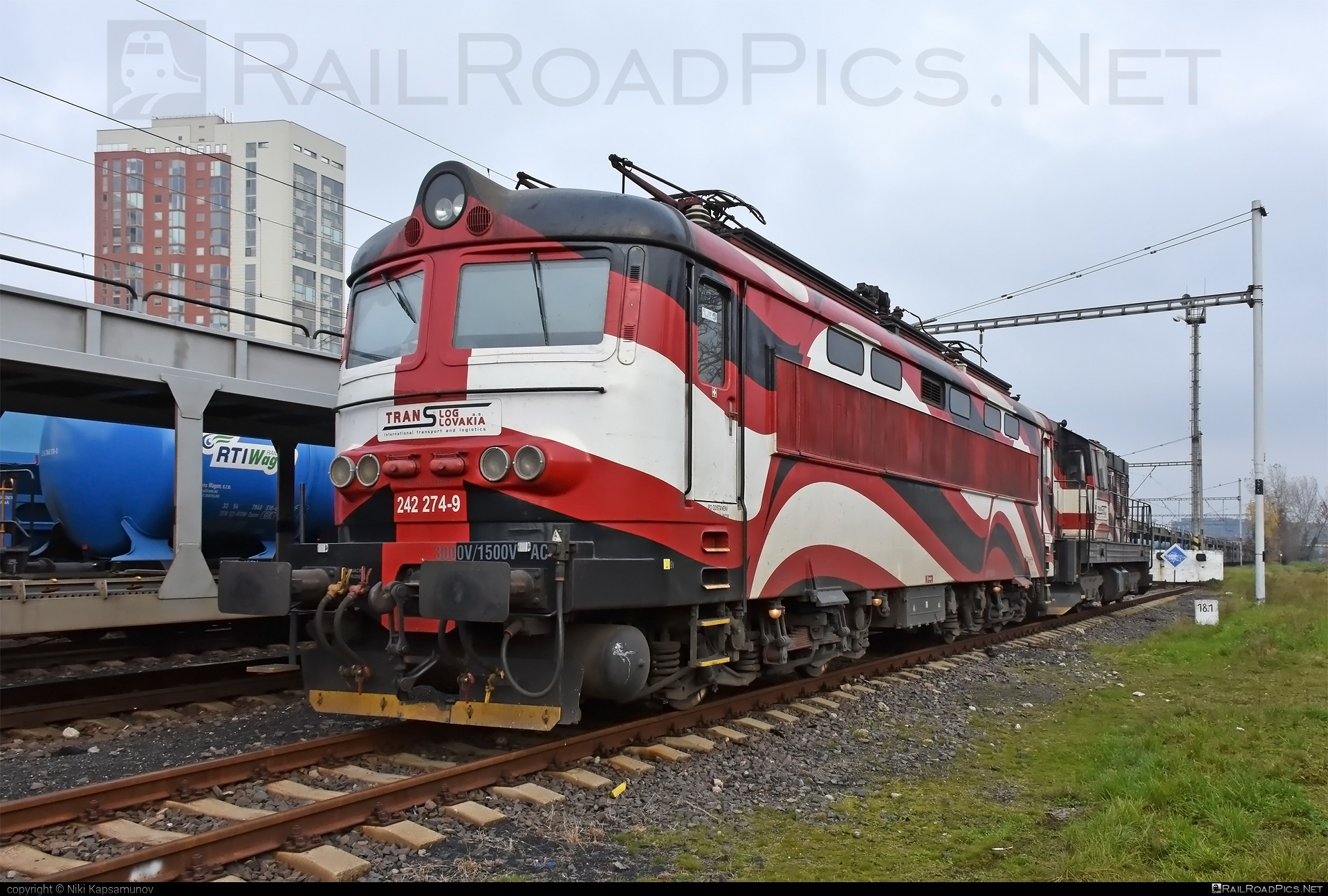 Škoda 73E - 242 274-9 operated by PETROLSPED Slovakia s.r.o. #locomotive242 #plechac #skoda #skoda73e #tlssk #translog #translogslovakia