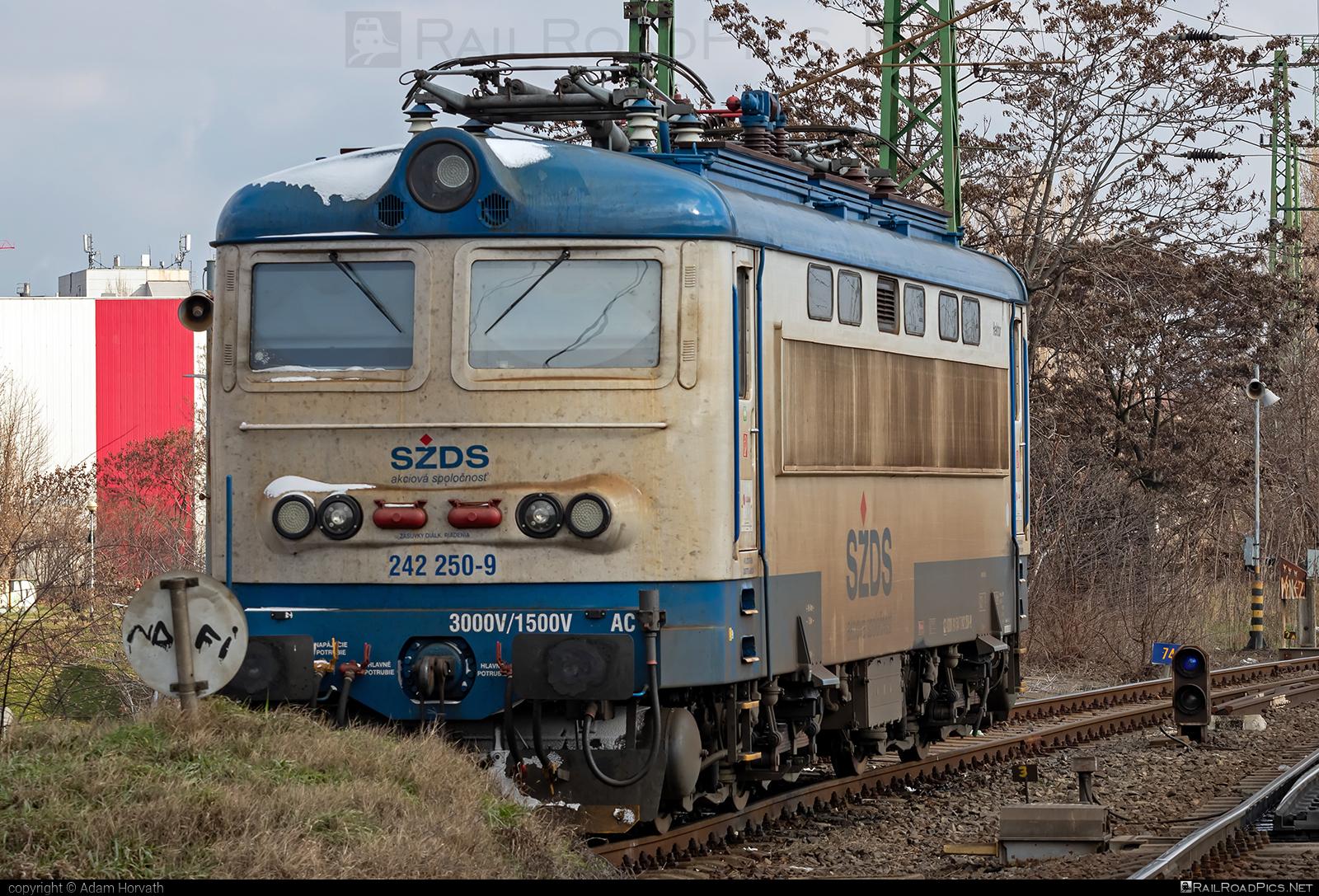 Škoda 73E - 242 250-9 operated by I. G. Rail, s. r. o. #igrail #locomotive242 #plechac #skoda #skoda73e #szds